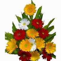 Send Same day flower in Bangalore