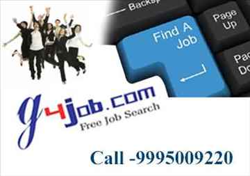 Logistics Executive job openings in Kochi