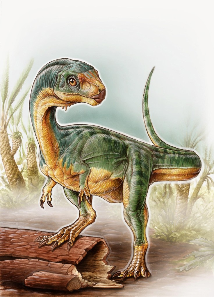 Meet Chilesaurus a plant eating relative of T Rex dinosaurs