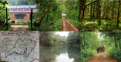 wildlife sanctuary in Baleshwar