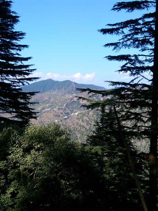 Visiting Dhanaulti near Mussoorie