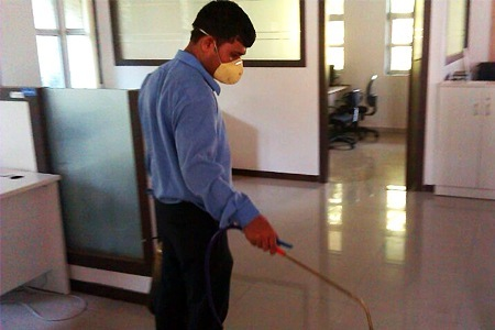 Pest Control Services in Hubli