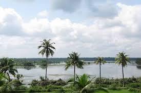 Kayamkulam Lake in Alappuzha