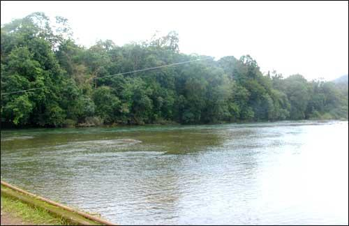 Forests in Chittoor