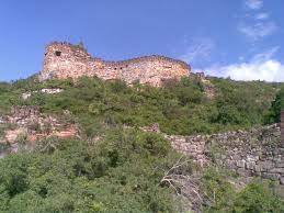 Forts in Nellore