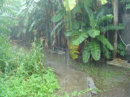 Monsoon in Asansol