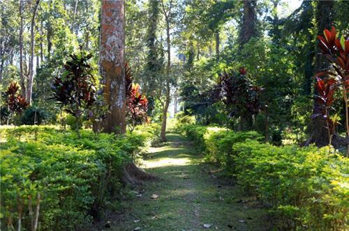 Jokai Botanical Garden