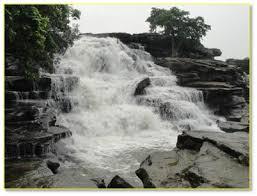 Surha Taal bird sanctuary