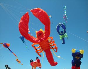 Kite Festival in Bhuj