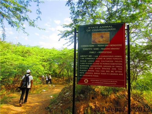 Trekking Routes at Sukhna Wildlife Sanctuary in Chandigarh