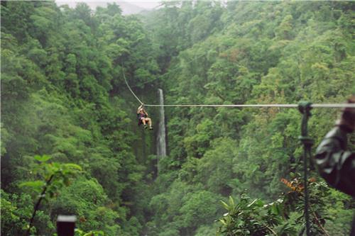 Flying Ziplines at Kikar Lodge near Chandigarh