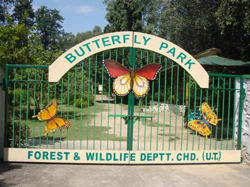 Butterfly Park in Chandigarh