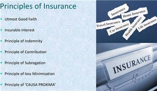 Insurance In Chandigarh