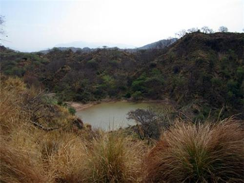 Forest treks near Chandigarh