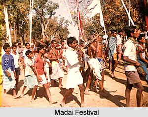 Chhattisgarh Cultural Life