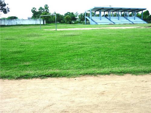 Sports Stadium in Vellore