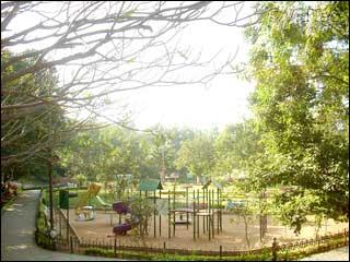 Jaymahal park in Bangalore