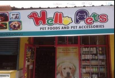 Pet Accessories in Ernakulam