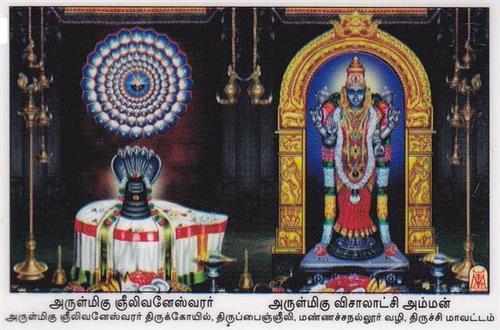 Arulmigu Gneelivaneswarar Temple Deities