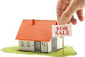 Real Estate Consultant Ernakulam