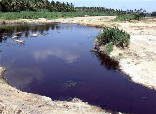 Tannery Effluents in Palar River