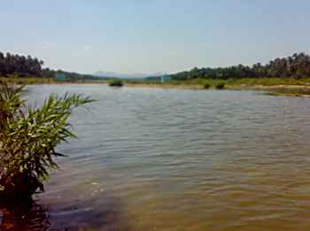 Palar River in Vellore