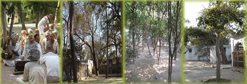 Tatiya Sthan in Vrindavan Location