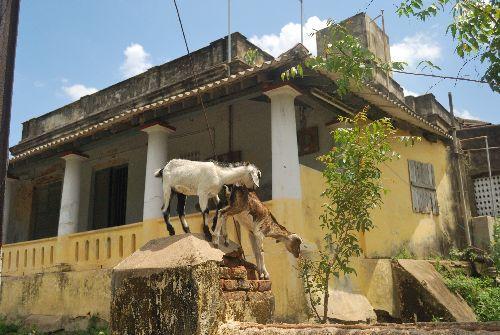 Localities in Cuddalore