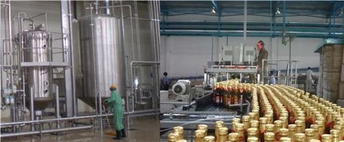 Industries in Daman