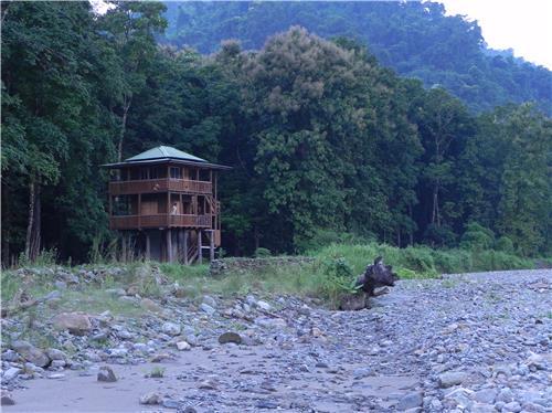 Watch Tower at Mahananda Wildlife Sanctuary in Darjeeling