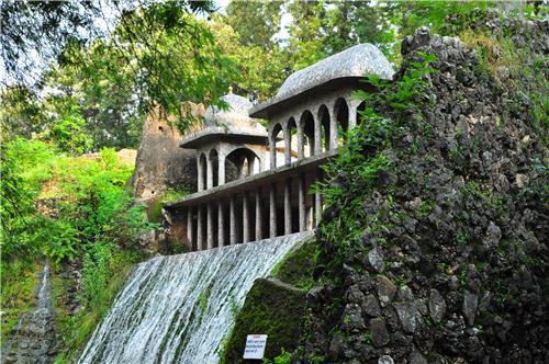 Wonderful Sight of Rock Garden in Darjeeling