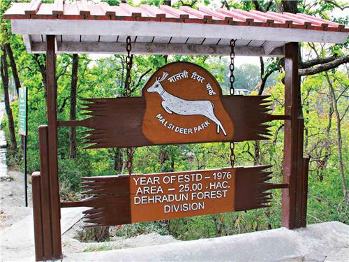 Wildlife in Dehradun