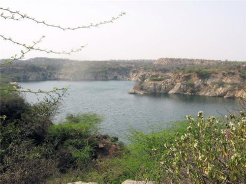 Natural Beauty of Indira Priyadarshini Wildlife Sanctuary