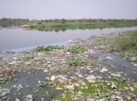 River Yamuna Pollution