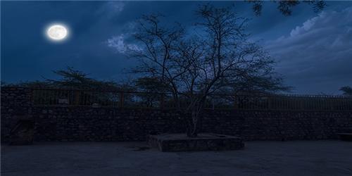 Jamali Kamali at Night