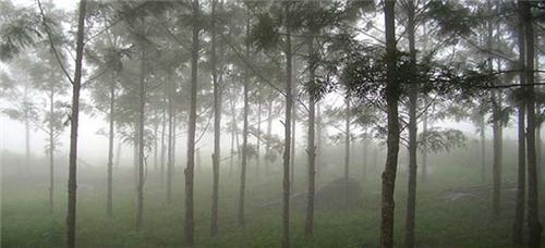 Beautiful Yelagiri Hills