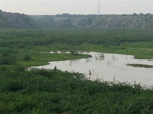 Badkhal Lake near Faridabad