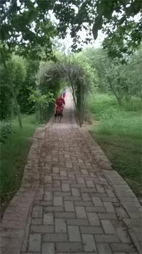 Picnic spot in Faridabad