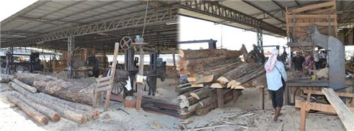 Timber Industry in Gandhidham