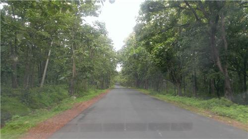 Hyderabad to Goa