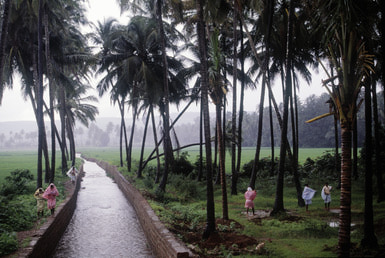 Goa During the Monsoon Season