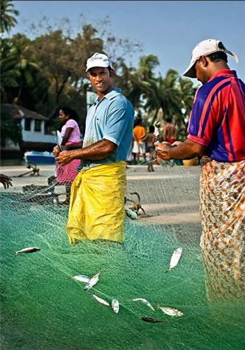 Fishing Industry Calangute