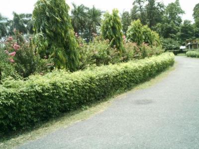 Gorakhpur Parks and Gardens