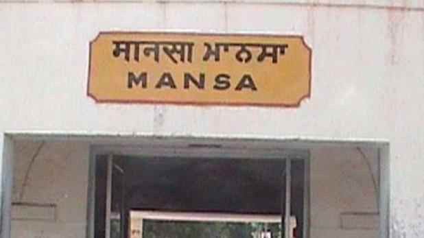 About Mansa