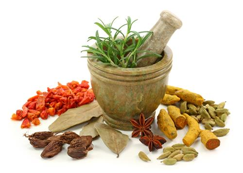 Occupational Therapies and Alternative Treatments in Haryana