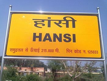Profile of Hansi