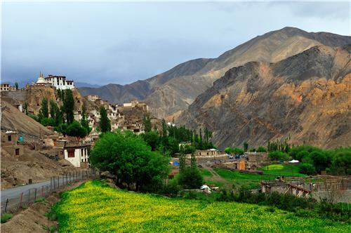 Nature Stock of Ladakh