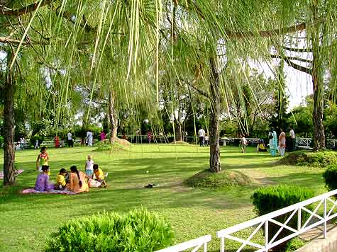 Garden areas in the Bombay Picnic Spot