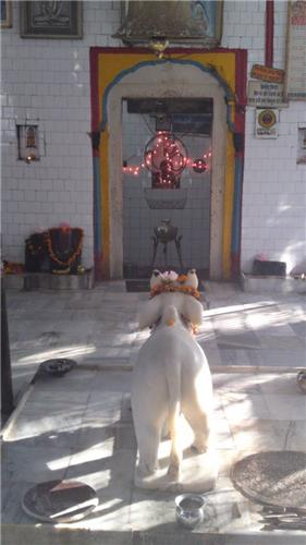 Shiv Bari Temple in Gagret