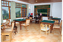 Various Games and Activities at Kasauli Resort